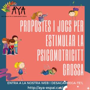 GUIA PROPOSTES ACTIVITATS PSICOMOTRICITAT GROSSA I PRAXIES_cat