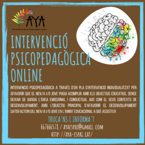 INTERVENCIÓ PSICOPEDAGOCICA ONLINE